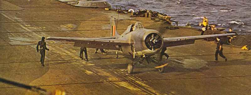 Royal Navy Wildcat V