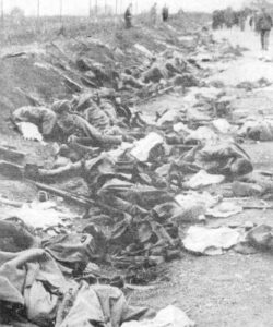 Romanian dead in the Battle of Kronstadt