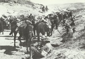 British cavalry close to Jebel Hamrin