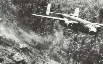 B-25 bomber in close above the jungle