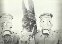 Gasmask for men and donkey