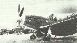 RAF Mustangs