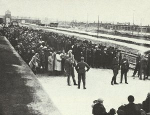 'selection' at Auschwitz-Birkenau concentration camp