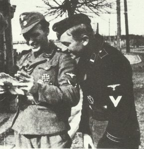 NCOs of the Wiking Division in 1943