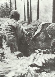 Bazooka in Normandy