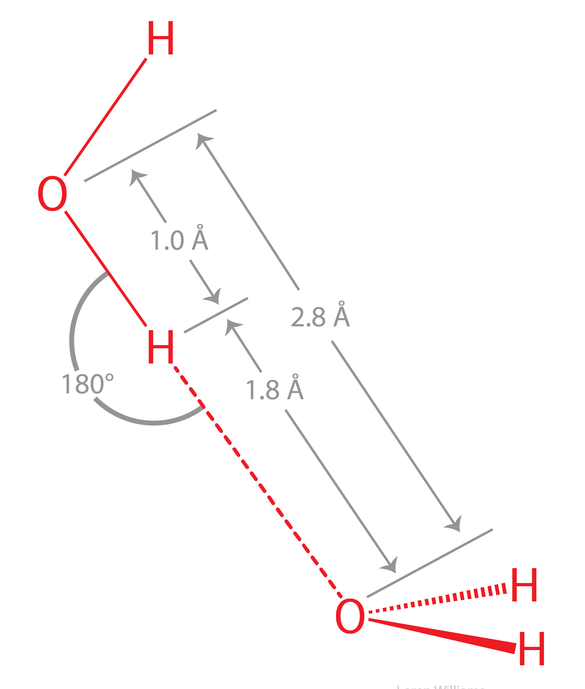 Molecular Interactions Noncovalent Interactions