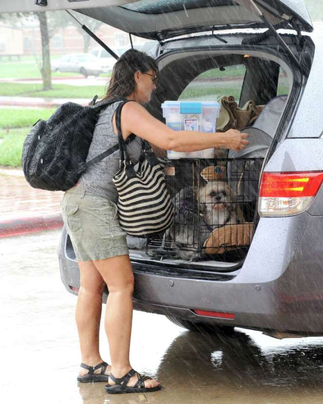 A Hurricane Harvey Victim Arrives With Her Dog At The Katy Isd Shelter Cinco Ranch