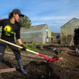 Can San Jose Revitalize Local Food and Farms in Silicon Valley?