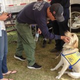 Counselors, Canines Helping Firefighters Battle Emotional Stress