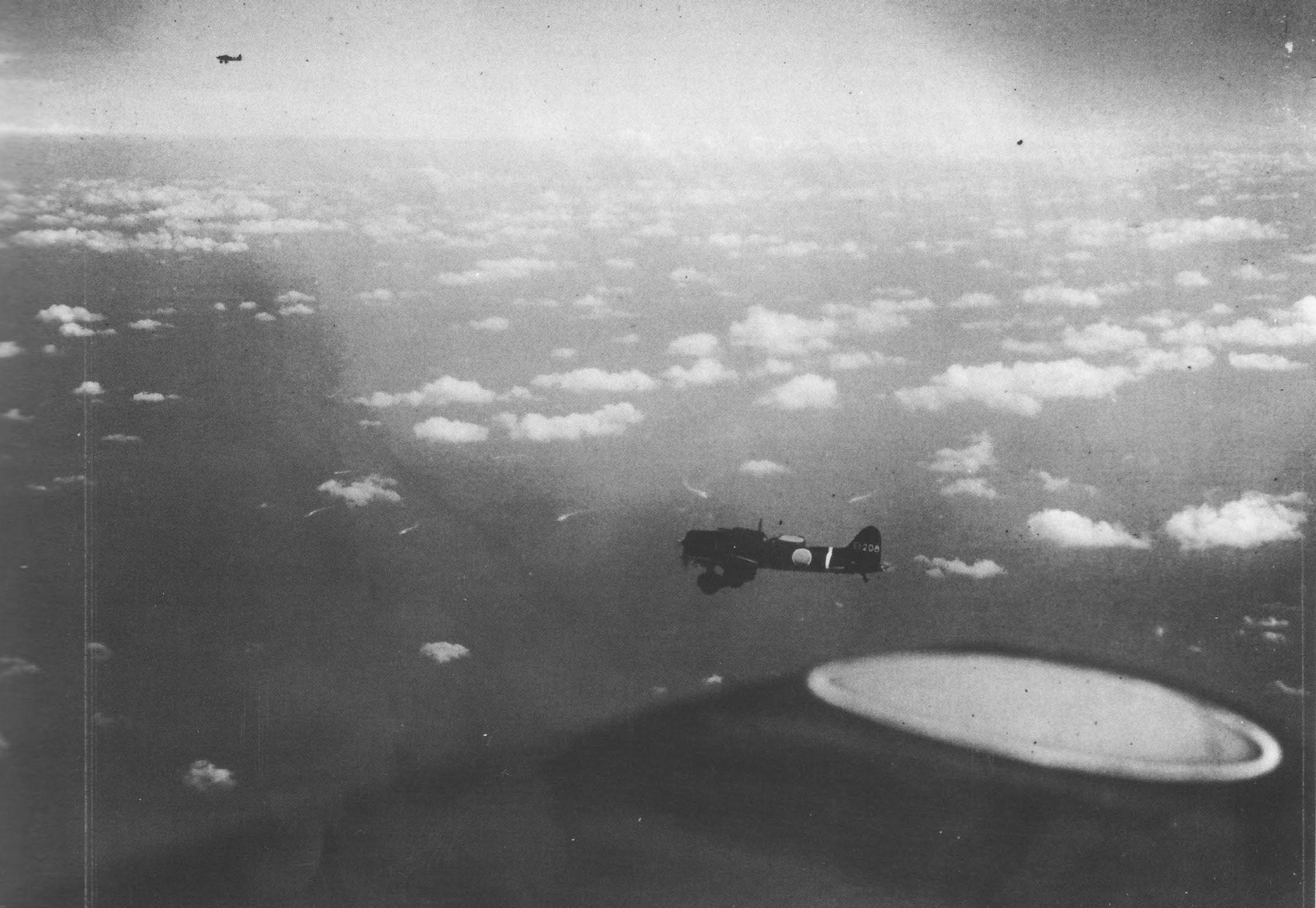 D3A Type 99 dive bomber of either Shokaku or Zuikaku in flight, either en route to attack Neosho and Sims in morning or returning from failed scouting mission in afternoon, Battle of Coral Sea, 7 May