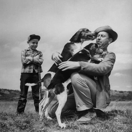 Dogs Nettie and Duke greeting Author Fred Gipson and his son Mike before the coon hunt, 1949.