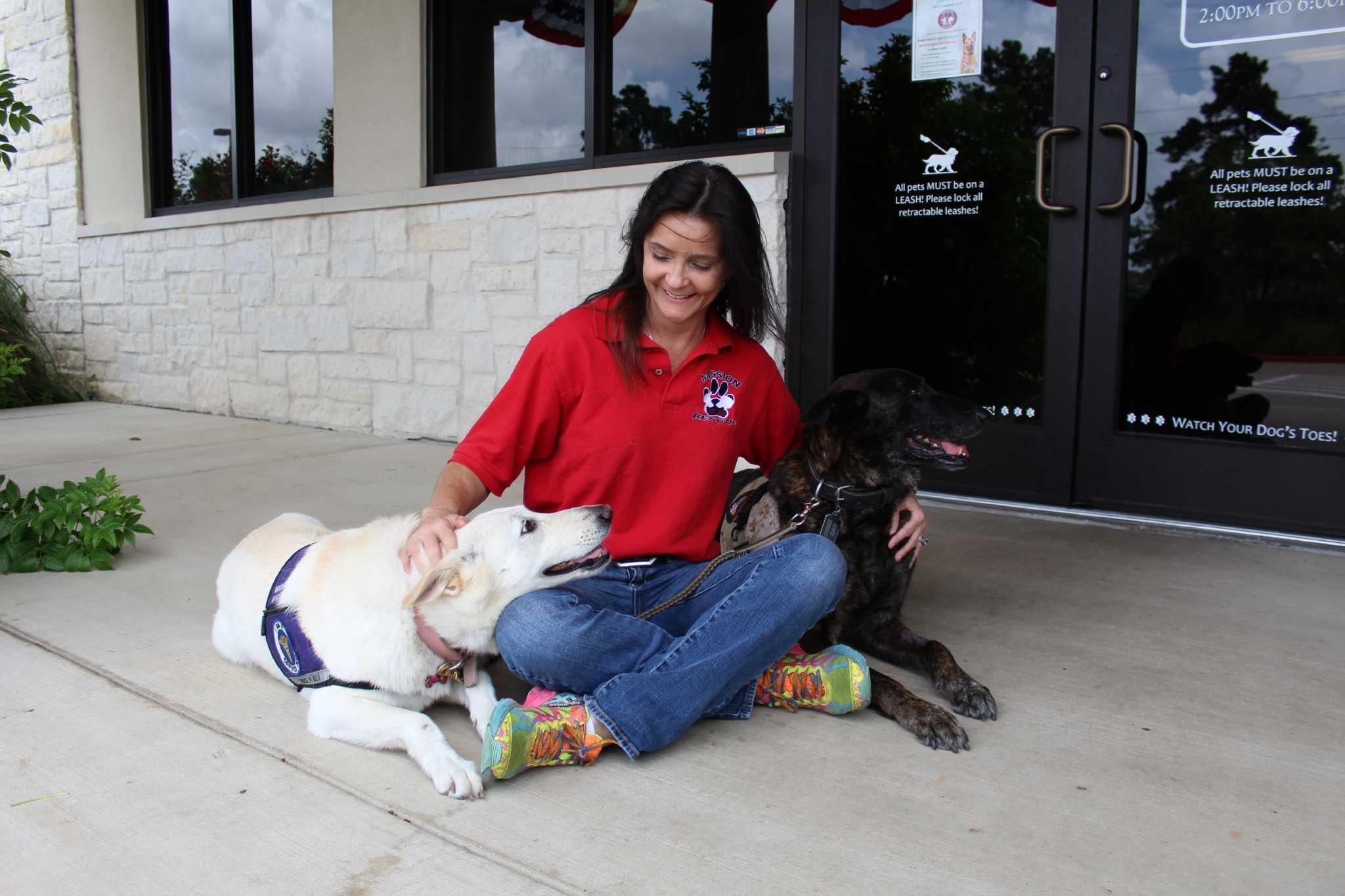Pet resort helps nonprofit rehabilitate military dogs Houston
