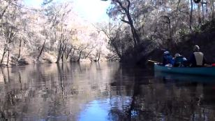 1280x720 Movie: Floating downstream (15M), in Alapaha River at Statenville, January 2014 WWALS Outing, by Gretchen Quarterman, 18 January 2014