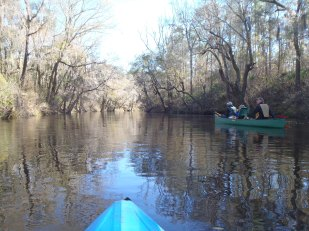 4288x3216 Catching up with the canoe, in Alapaha River at Statenville, January 2014 WWALS Outing, by Gretchen Quarterman, 18 January 2014