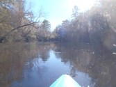 4288x3216 Sun and water, in Alapaha River at Statenville, January 2014 WWALS Outing, by Gretchen Quarterman, 18 January 2014
