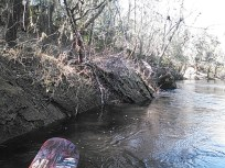 640x480 Red paddle, in Statenville to Sasser Landing on the Alapaha River, by John S. Quarterman, for WWALS.net, 15 February 2015
