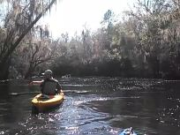 640x480 Movie: MOL093 (3.7M), in Statenville to Sasser Landing on the Alapaha River, by John S. Quarterman, for WWALS.net, 15 February 2015