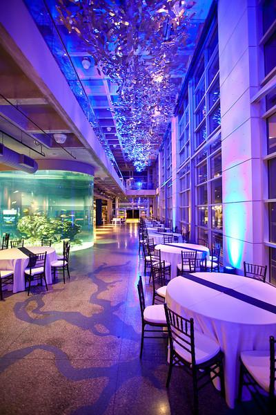 South Carolina Aquarium Charleston Sc Wedding Venue