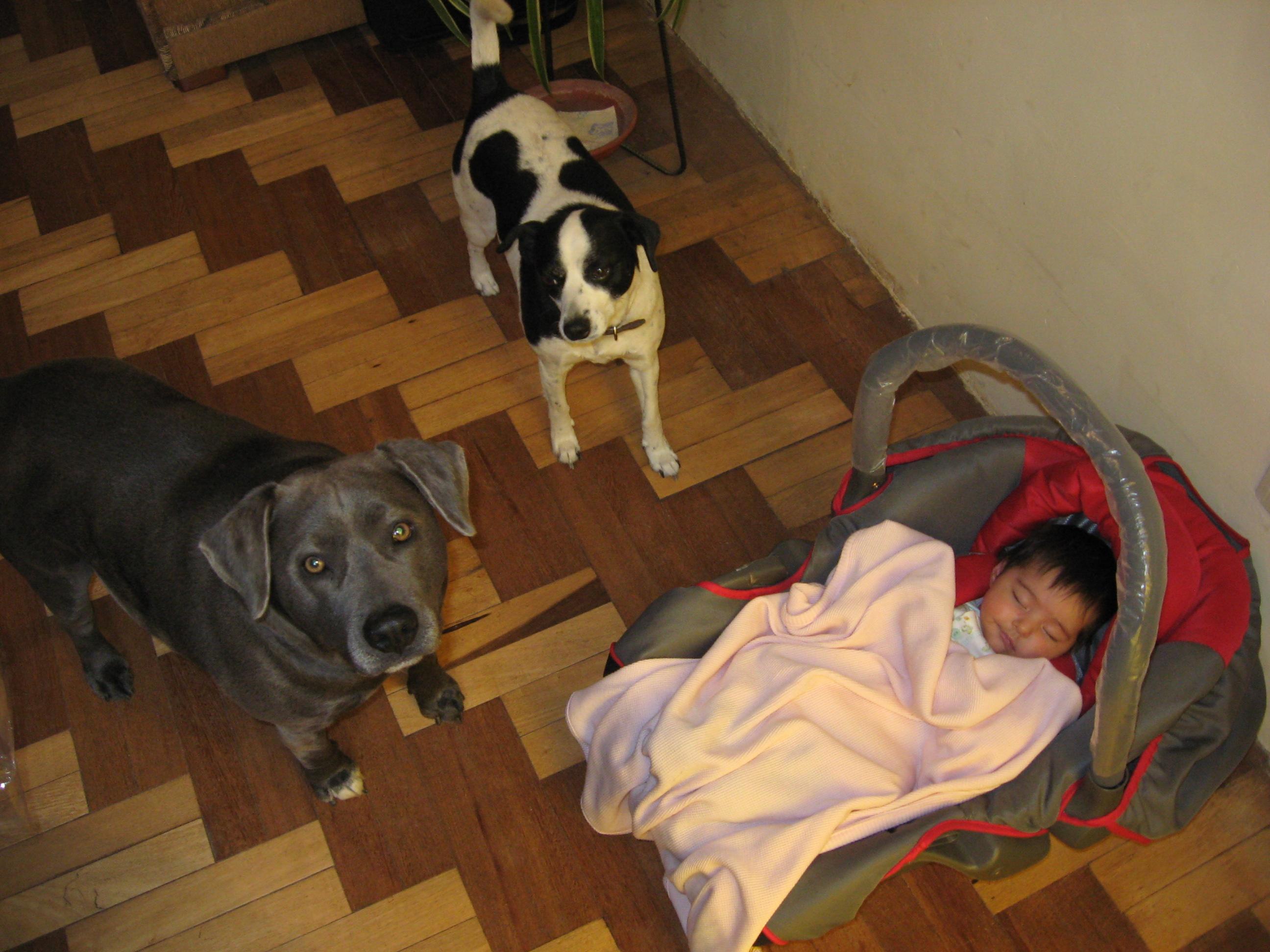 Roxi, Manchita and Brianna