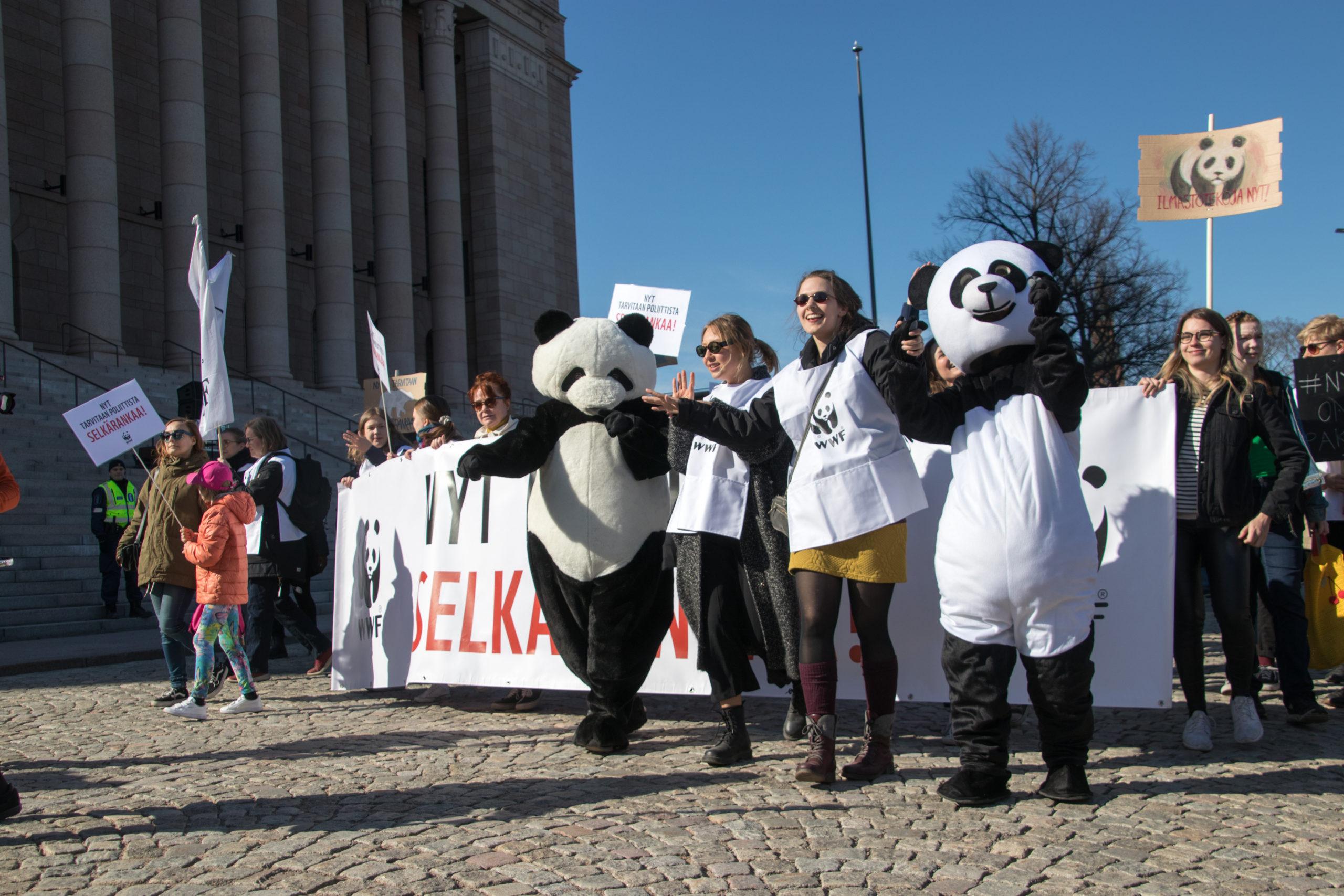 WWF Nuorten haku auki kaudelle 2021!