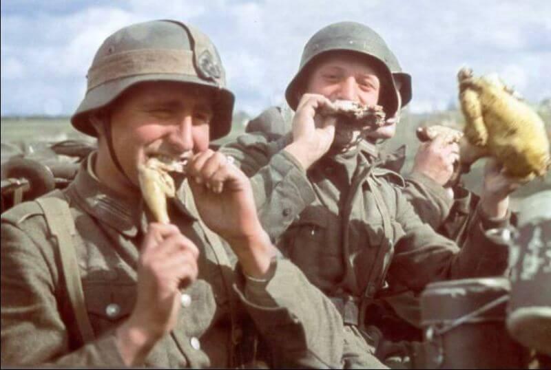 «Мальчики-романтики» на пути к Сталинграду. Лето 1942 г.
