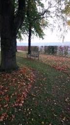 Groesbeek Canadian War Cemetery (52)