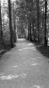 dachau-road-bw