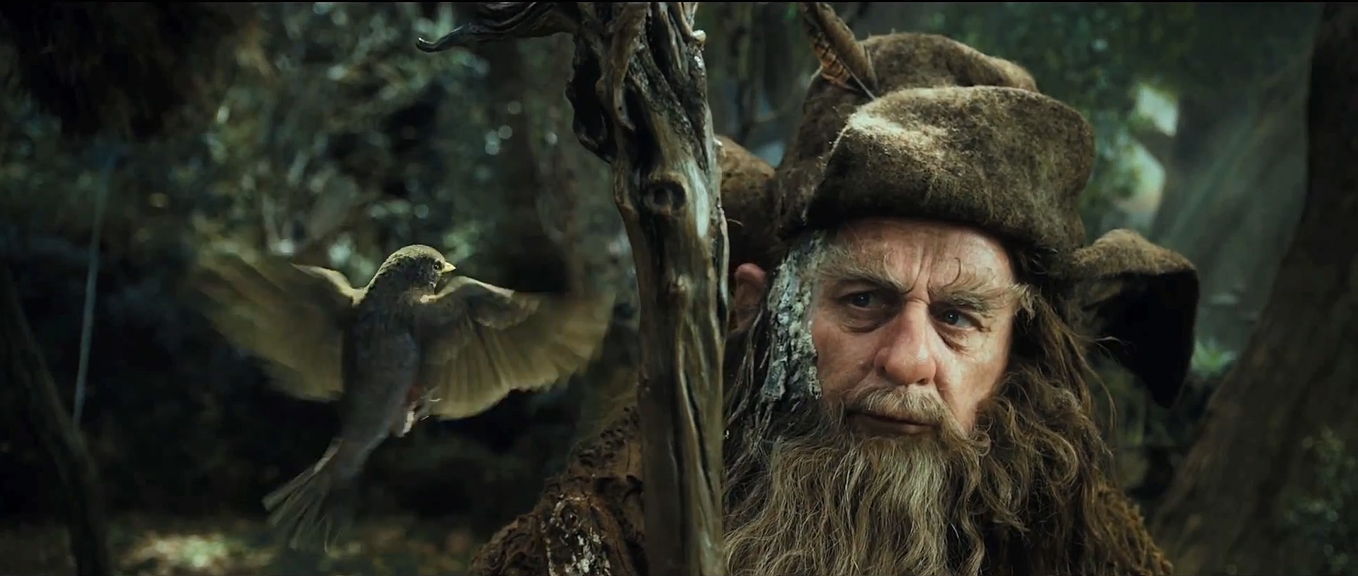 Radagast the Brown the Hobbit an Unexpected Journey Tolkien Peter Jackson Sylvester McCoy