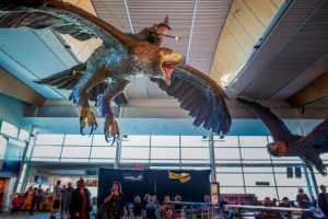 Gandalf at Wellington Airport-Low res