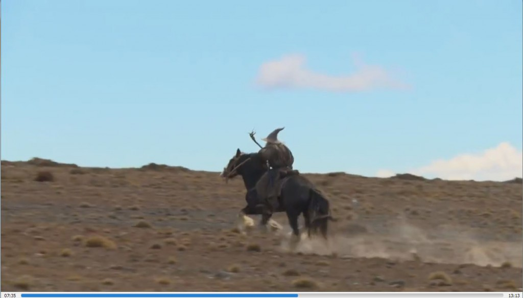 gandalf-horse