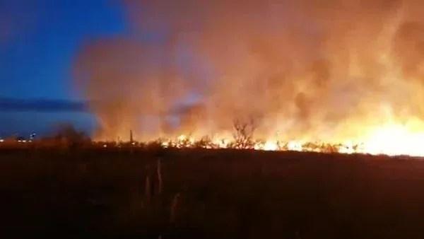 La llamas se originaron en pastizales de un terreno lindero