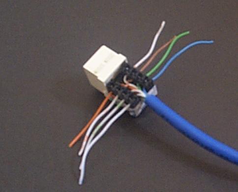 network wall socket wiring diagram  2013 golf tdi fuse