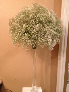 Babys Breath Centerpiece Weddingbee Photo Gallery