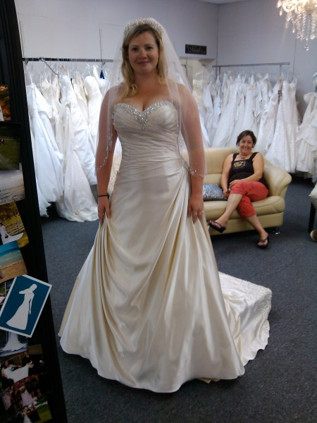 Did anyone else hate their dress when they tried it on at the     Did anyone else hate their dress when they tried it on at the alteration  appt