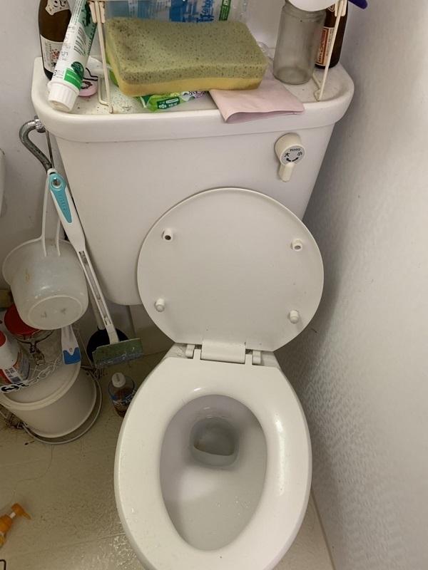 大阪府泉佐野市での原因のトイレのつまりを解消