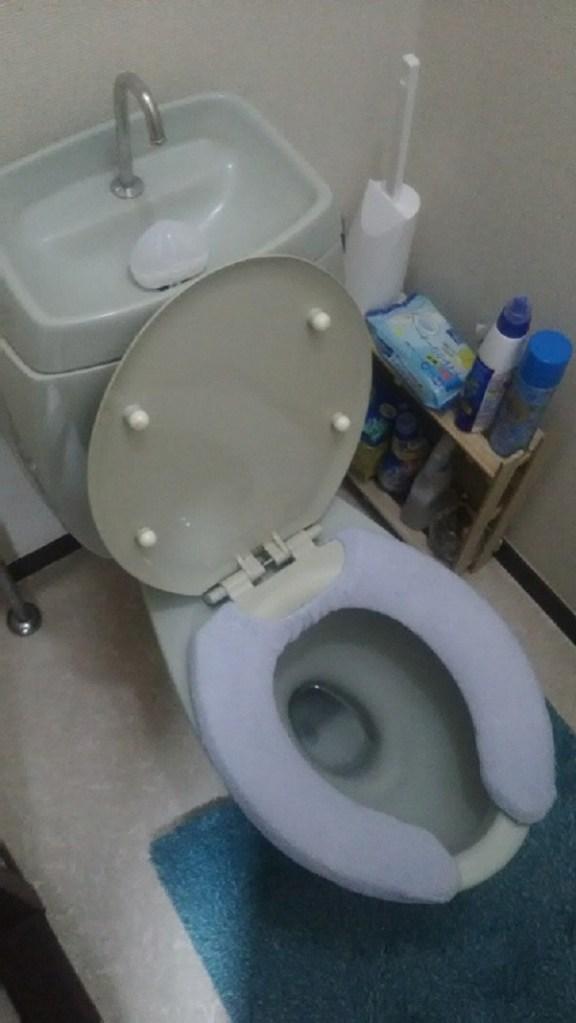 大阪市平野区にてトイレのつまり事例