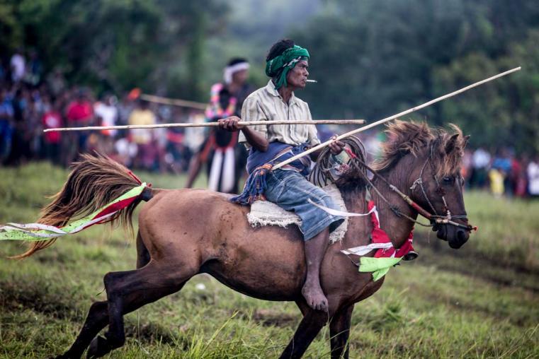 pasola festival sumba horse