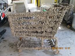 Shopping cart covered