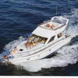 bateau_vitech-vitech-59_3750359