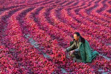 China, © Theam Meng Sea