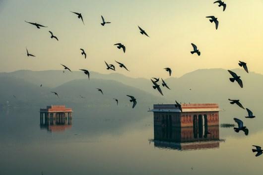 © Mahesh Balasubramanian - India