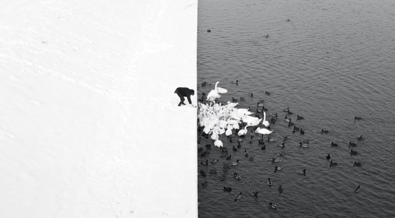 © Marcin Ryczek