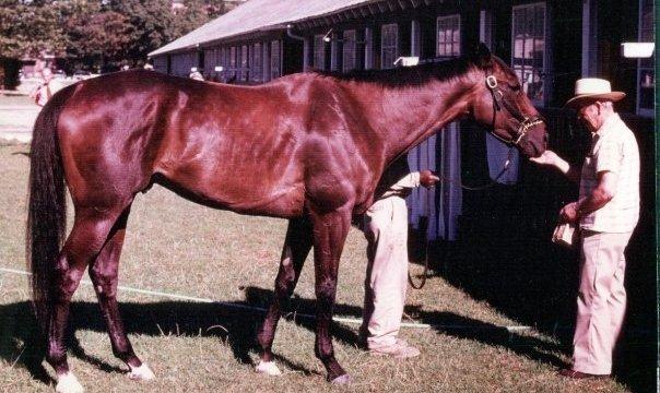 Eddie Hayward   Kentucky Derby Winner