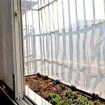 QI-CHE-YI Bâche Transparente, Bord épaissi perforé imperméable à l'eau et la fenêtre du Panneau en Plastique Anti-âge Balcon Fleur Tente à Effet de Serre des Cultures,5x10m
