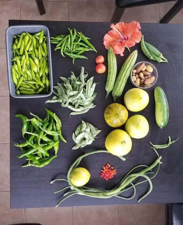 mixed farming product