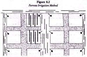 Furrow irrigation method