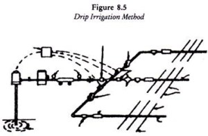 Structure of Drip Irrigation Method