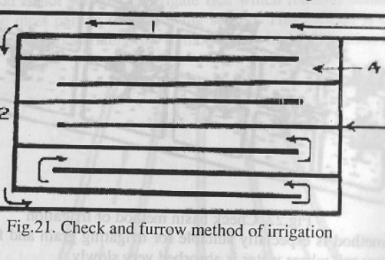 Check and Furrow Irrigation Systems