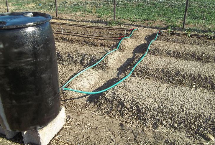 gravity fed irrigation
