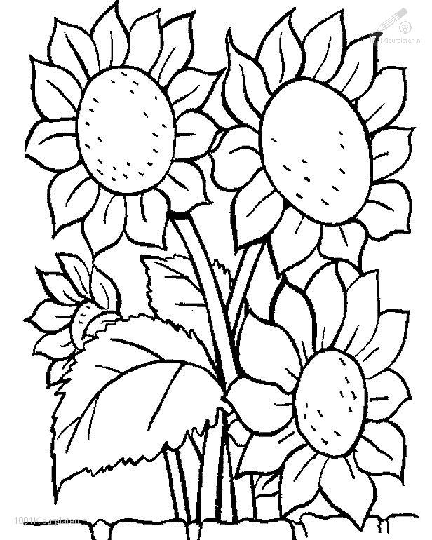 size 89 76 kb viewed 23518 coloringpage rating 1 2